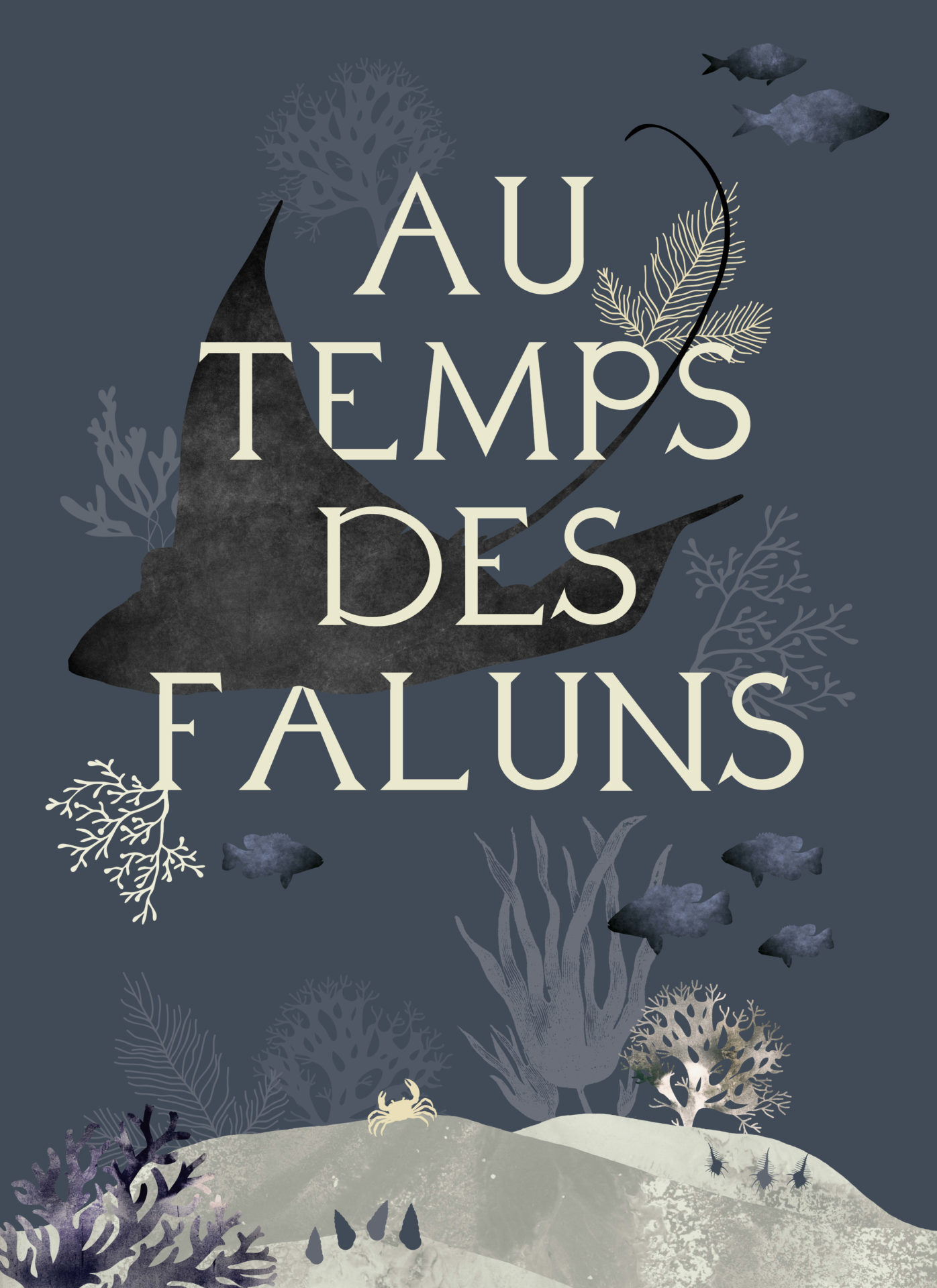 You are currently viewing Exposition «Au Temps des Faluns»
